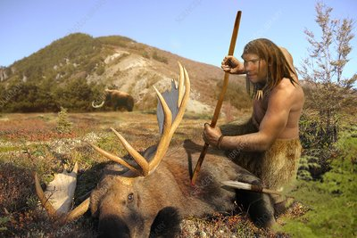 Homo neanderthalensis hunting, illustration