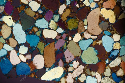 Sandstone in dusty matrix, polarised light micrograph