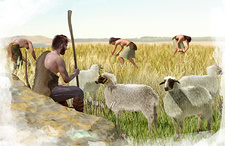Neolithic agriculture, illustration