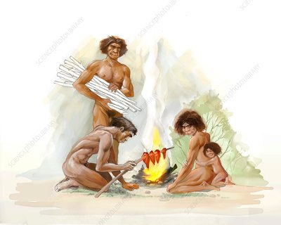 Homo erectus family, illustration