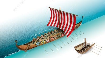 Viking longship, illustration