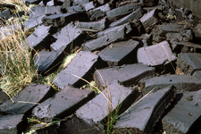 Peat blocks after cutting
