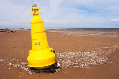 Navigation buoy washed ashore by storms