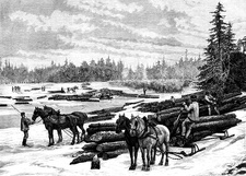 19th Century Canadian woodcutters, illustration