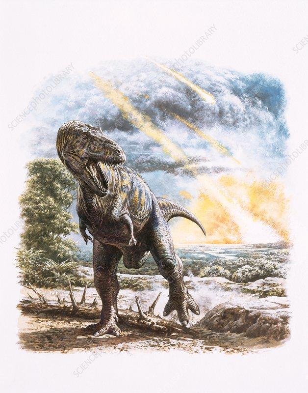 Tyrannosaurus rex dinosaur and meteorites
