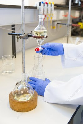 Scientist doing a solvent-based extraction