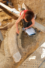 Mammoth fossil tusk excavations