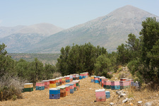 Beehives, Mani, Greece.