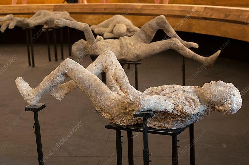 Body casts of victims of the Pompeii eruption