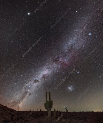 Milky Way over cacti, Atacama Desert, Chile
