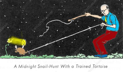 Midnight snail hunt by W. Heath Robinson