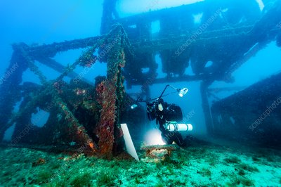 Diver monitoring an artificial reef