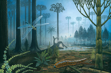 Carboniferous landscape, illustration