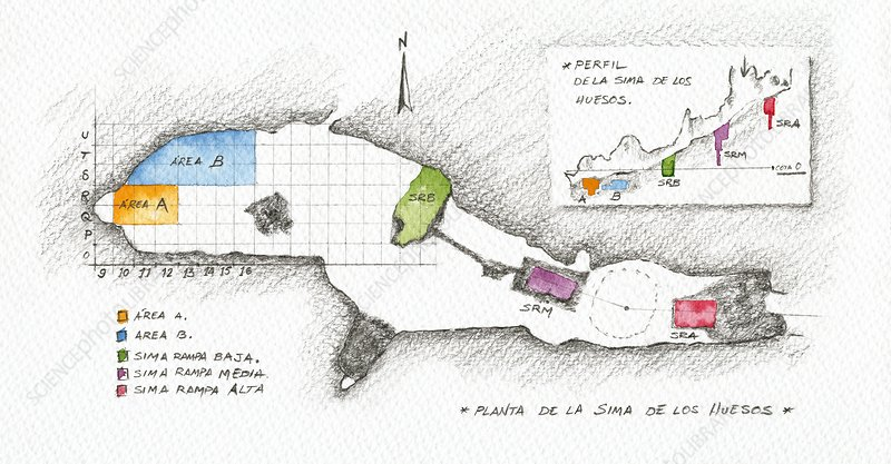 Map of the Atapuerca 'Pit of Bones' site