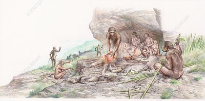 Homo erectus cooking meat, illustration