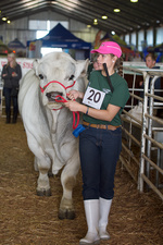 Young contestant at agricultural show