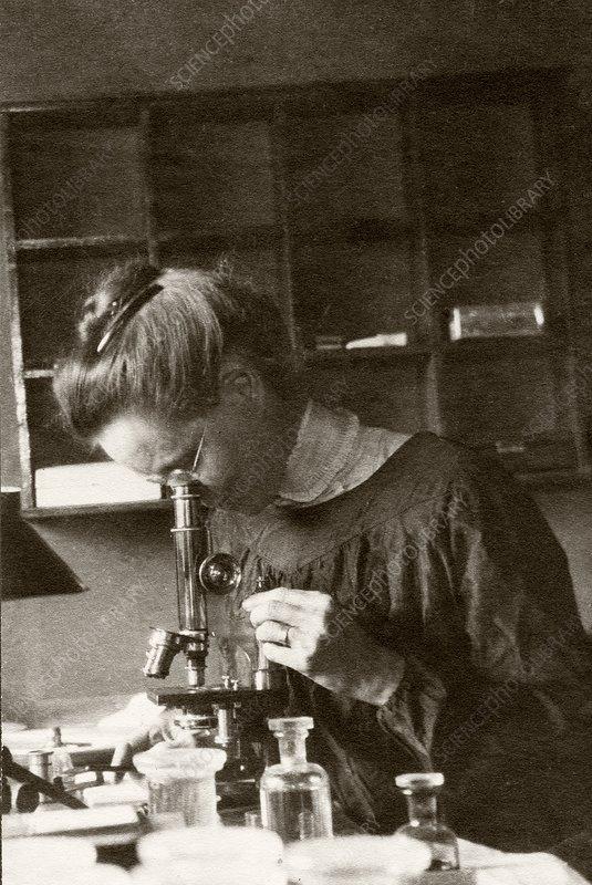 Nettie Maria Stevens, US geneticist