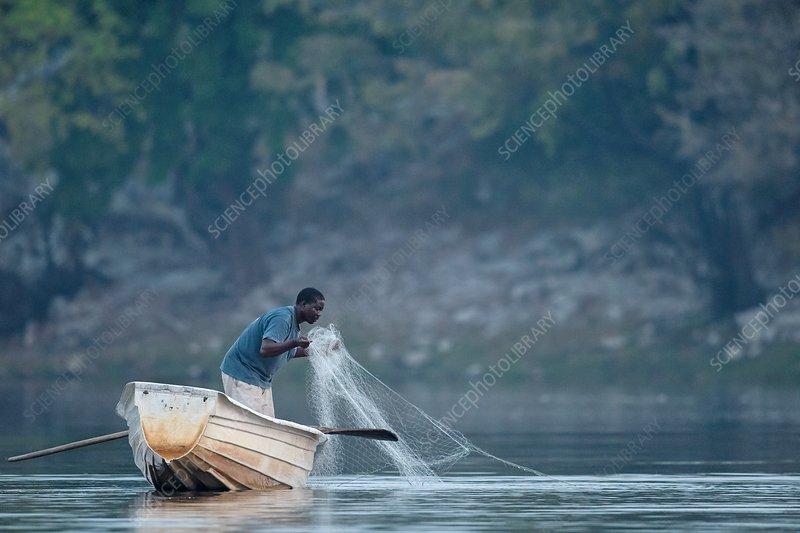 Chobe river fisherman