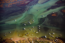 Fishing boats, Algarve, Portugal, aerial photograph