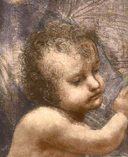 Head of an infant, illustration