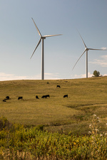 Wind turbines, Colorado, USA