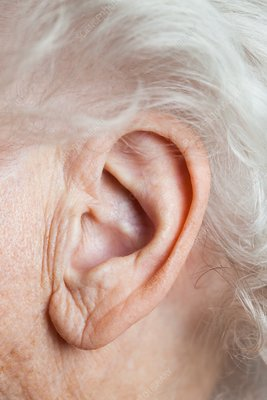 Elderly woman's ear