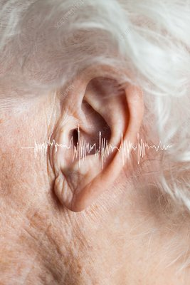 Elderly woman's hearing, conceptual image