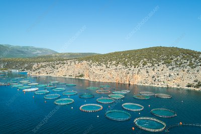 Fish Farm, Greece