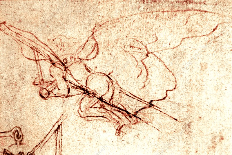 Leonardo's Flying Machine