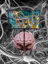 Brain research, conceptual illustration
