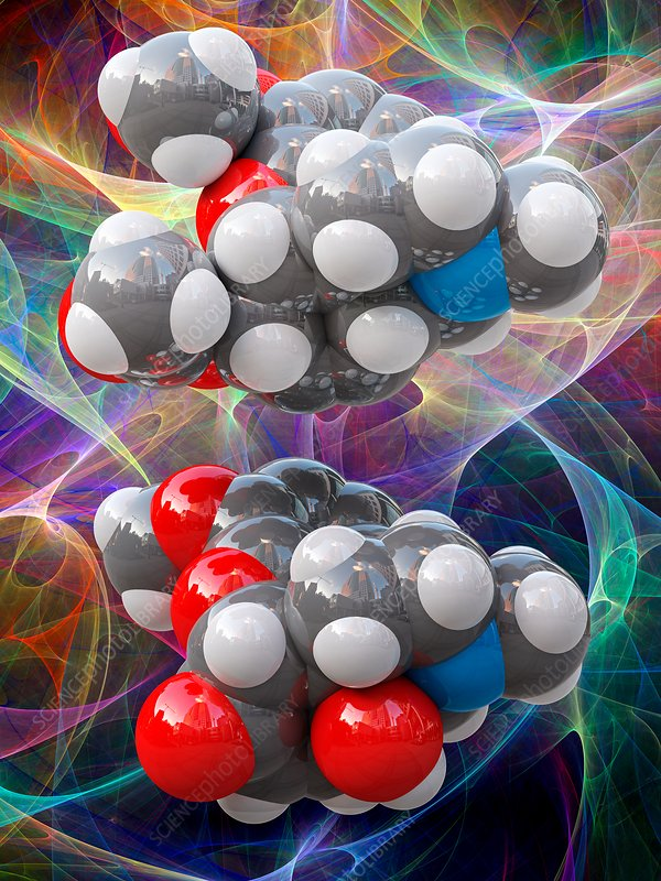 Heroin and oxycodone molecular models