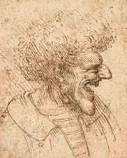 Caricature of a Man with Bushy Hair, 1495