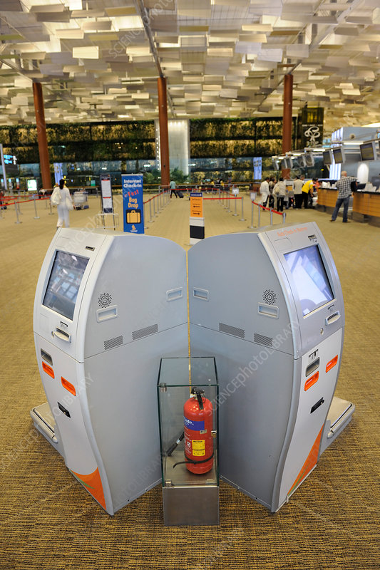Check-in desks, Singapore Changi Airport