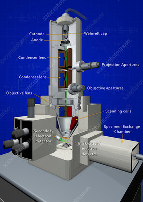 Scanning electron microscope, 3D illustration