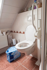 Domestic accessible toilet and incontinence pads