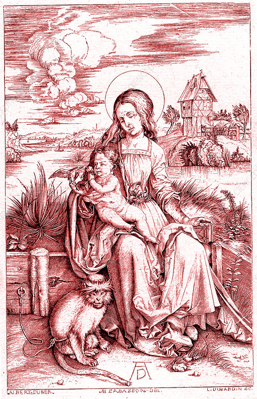 Virgin and Child with a Monkey' by Albrecht Durer