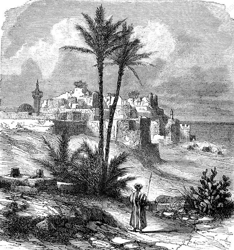 Jaffa, Palestine, 19th Century illustration