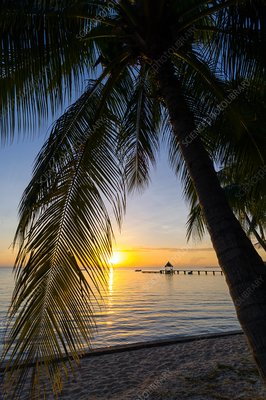 Tropical beach at sunset, French Polynesia
