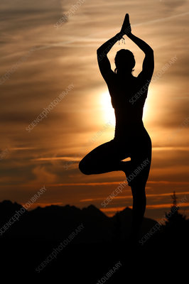 Silhouette of Woman Practicing Yoga