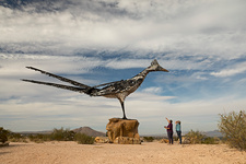 Recycled Roadrunner, New Mexico, USA