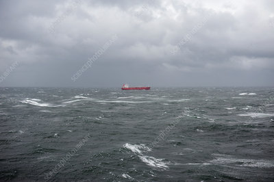 Cargo ship in storm, Netherlands