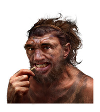 Neanderthal cleaning his teeth, conceptual illustration