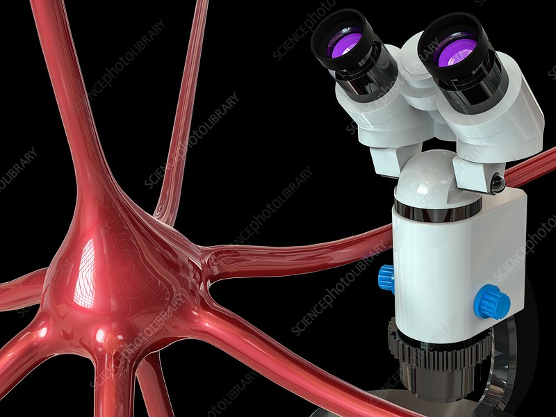 Nerve cell and microscope, illustration