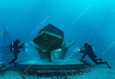 REXCOR artificial reef