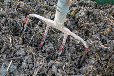 Garden fork in compost heap