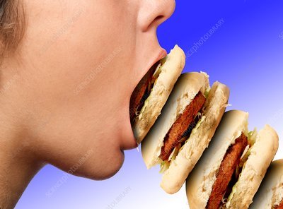 Excess consumption of food, conceptual image