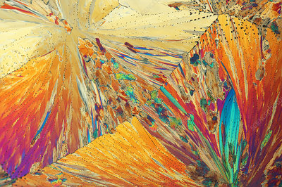 Acetanilide crystals, polarised light micrograph