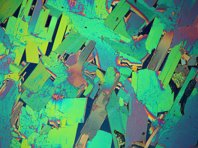 Nickel nitrate crystals, polarised light micrograph