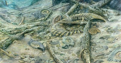 Dead ammonites on seabed, illustration