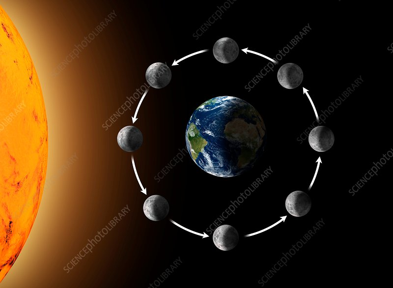 Phases Of The Moon As Seen From Space Illustration Stock Image